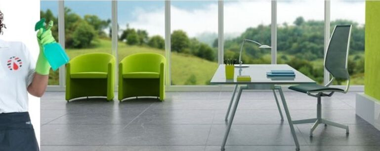Expertise in Green Cleaning Services
